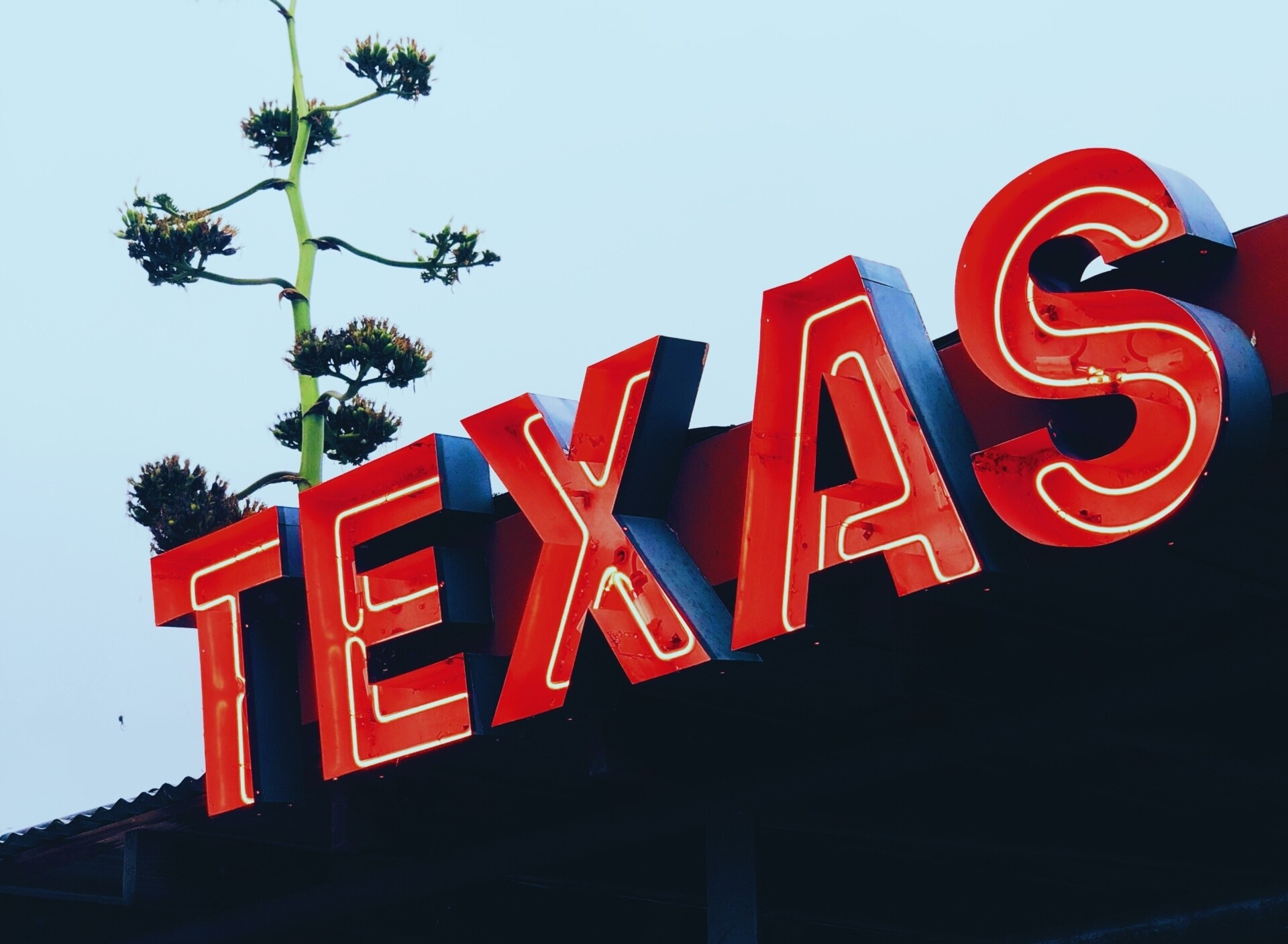 20 Best Places to Visit in Texas
